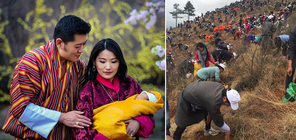Butão celebra nascimento do novo príncipe com plantio de 108 mil mudas de árvores 1
