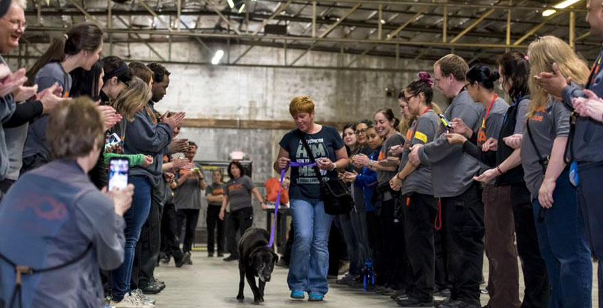 Havia 524 cães e gatos neste evento de adoção: todos conseguiram um lar novo 1