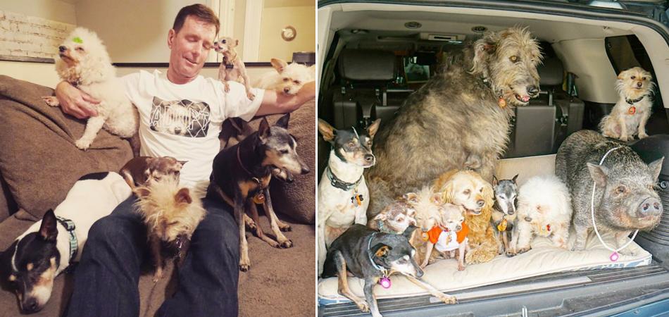 """Este homem dedica sua vida a cuidar de animais idosos e doentes considerados """"inadotáveis"""" 1"""