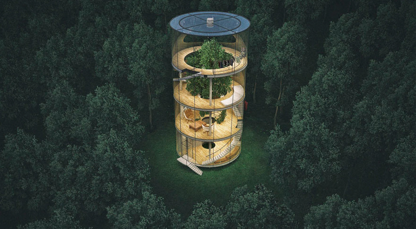 A incrível casa tubular de cristal construída em torno de uma árvore 1