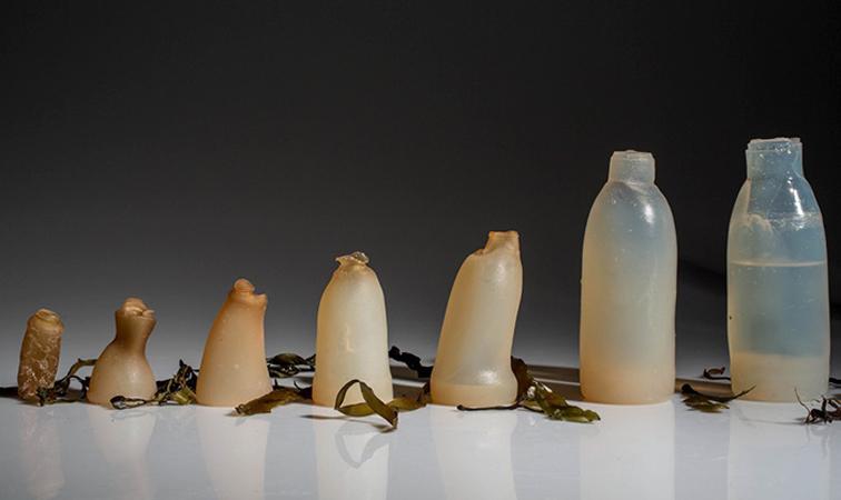 Estudante cria garrafas de água biodegradáveis feitas com algas como alternativa ao plástico 3
