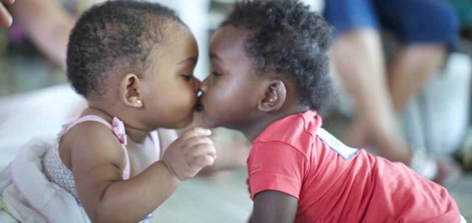orfanato procura doadores de cafuné