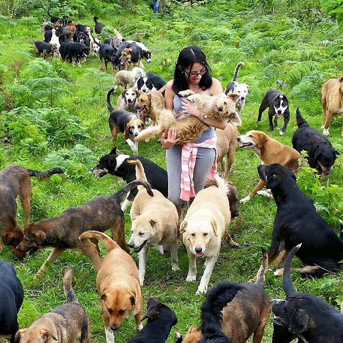 refugio-perros-mestizos-territorio-zaguates-costa-rica-4