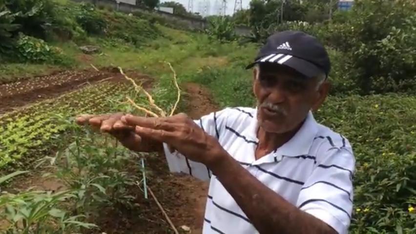 Ajude o seu Manuel a comprar um carrinho novo para transportar adubo orgânico para sua horta 2