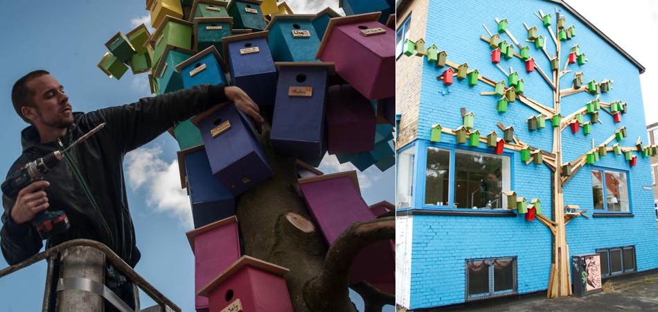 Designer constrói mais de 3 mil casas de passarinhos para protegê-los da poluição sonora nas cidades 1