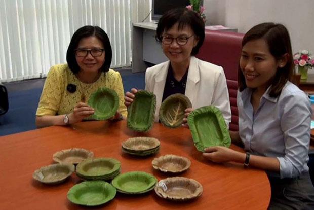 pratos descartáveis feitos de folhas