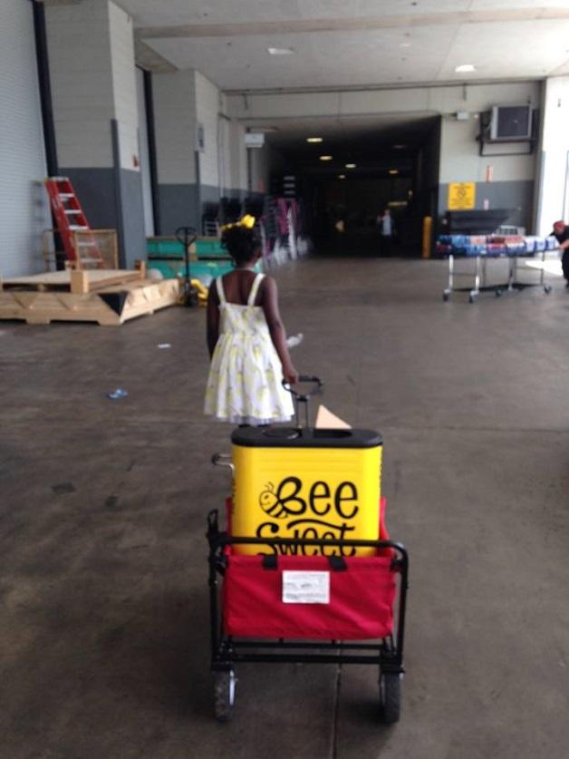 Menina de 11 anos fica milionária com limonada e reverte lucro na preservação de abelhas