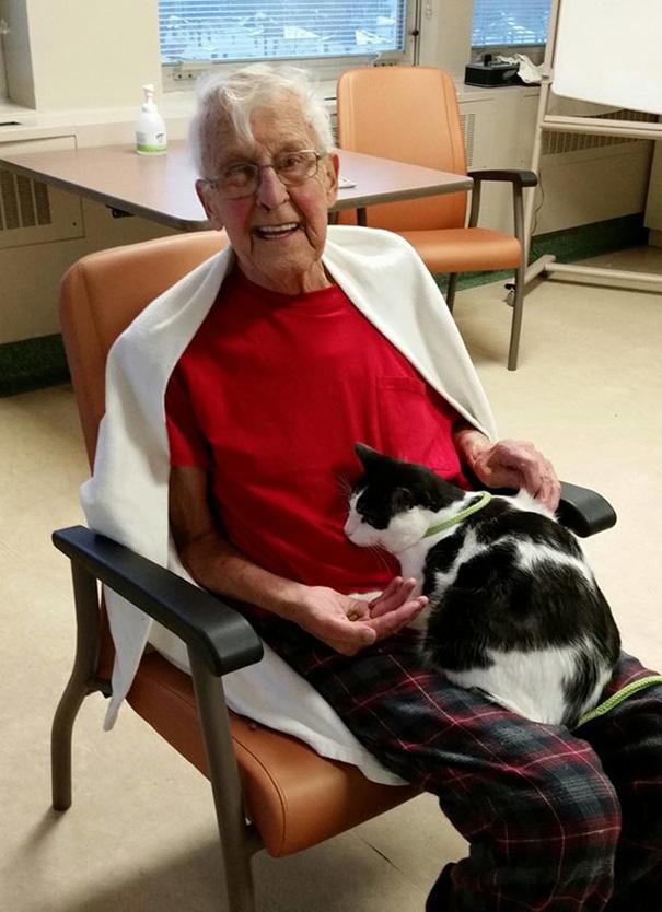 mascotas-visita-pacientes-enfermos-hospital-juravinski-canada-4