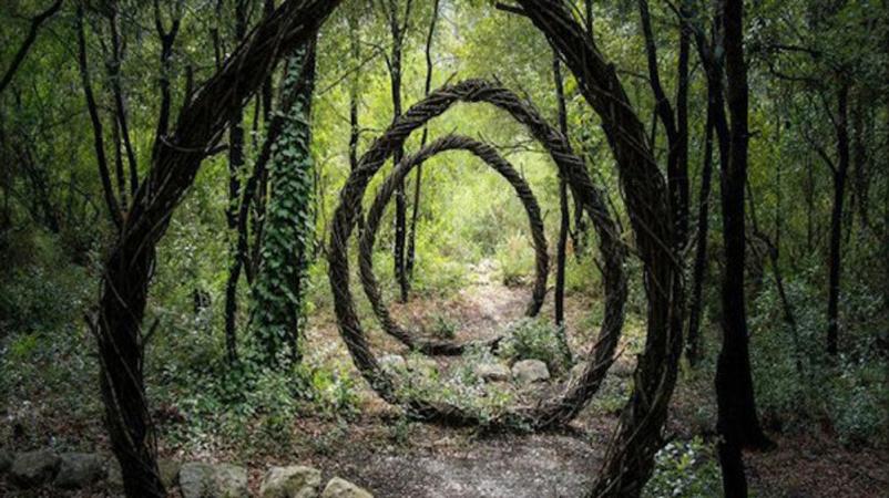 Artista fica um ano imerso na floresta criando instalações orgânicas e psicodélicas sensacionais 1