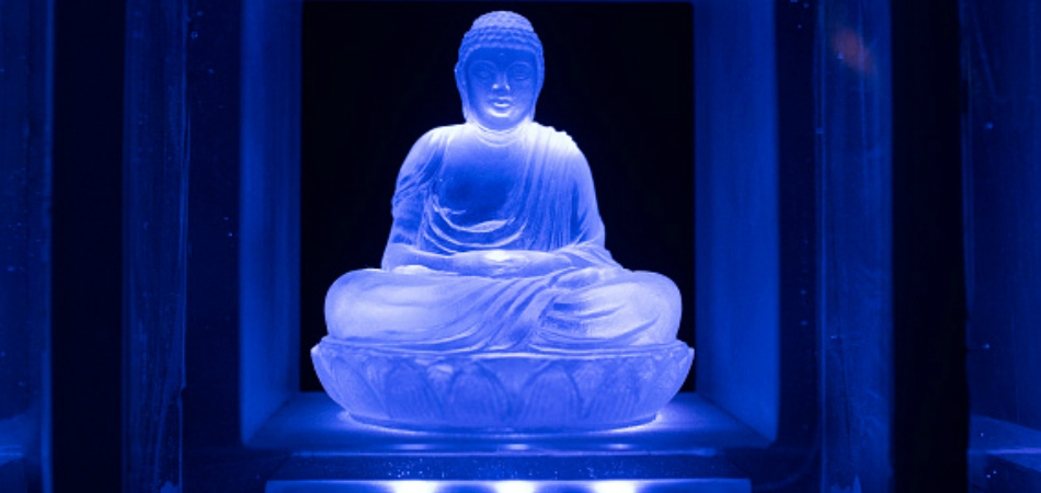 neurociência e budismo