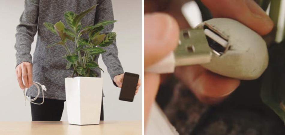 """Vaso de planta é o carregador de celular do futuro: sustentável e """"gratuito"""" 2"""
