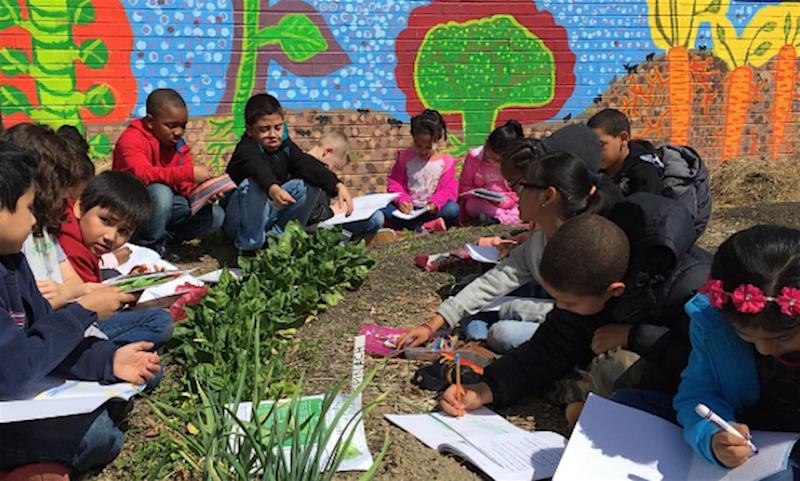 Educadora usa horta como método de ensino (e ganha atenção dos alunos mais difíceis da escola) 2