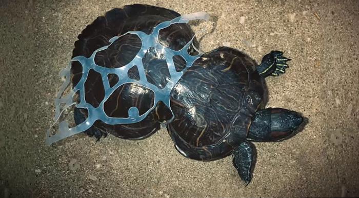 plastic2