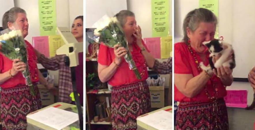 Alunos fazem surpresa emocionante para professora que perdeu sua gatinha e estava triste 3