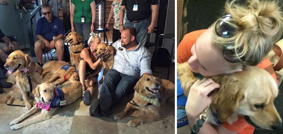 Cães treinados são levados para confortar familiares e feridos do massacre de Orlando 3