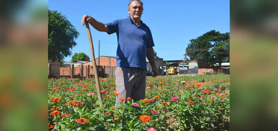 Ele transformou um terreno baldio em um lindo jardim de flores em Rondônia 3