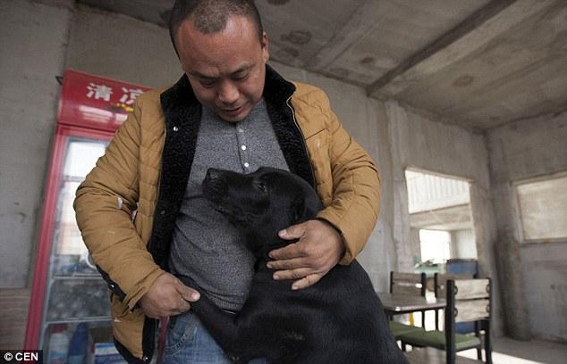 Milionário investe toda sua fortuna em abrigo para salvar cães do mercado de carne na China 2