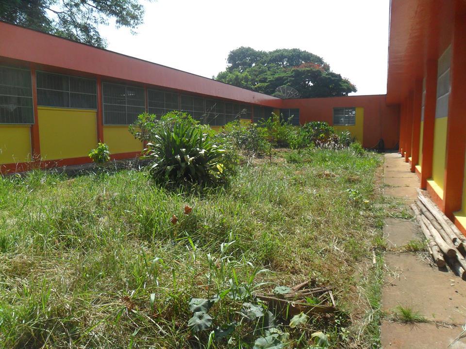 horta_escola_sp_antes