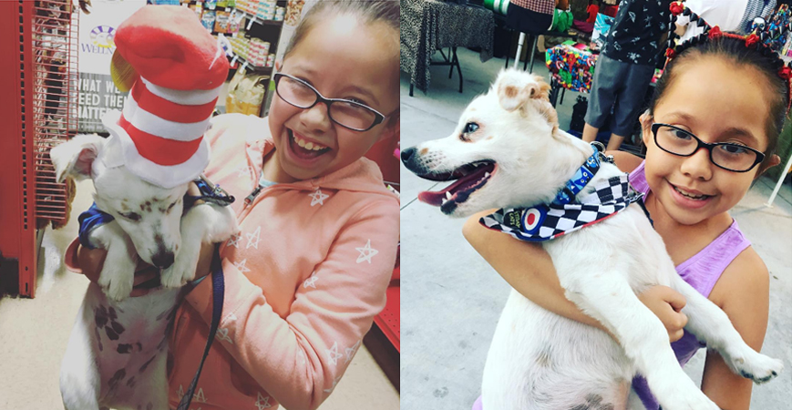 Menina surda ensina língua de sinais para o seu cãozinho surdo 4