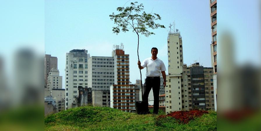 O brasileiro que viaja o mundo plantando árvores nativas – já foram 2 milhões de mudas em 21 países 2