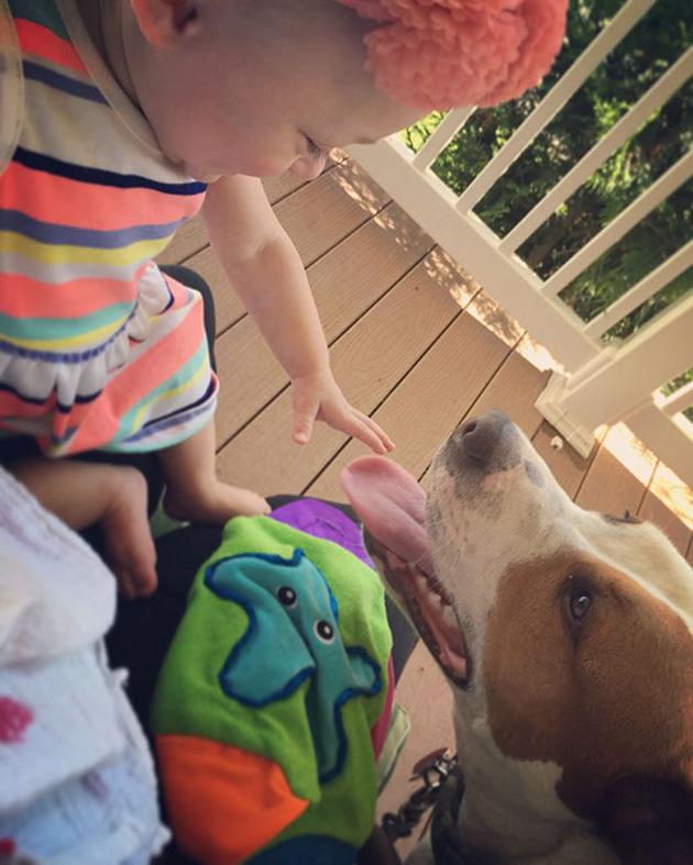 rescue-dog-baby-friends-jpeg-addie-belle-12