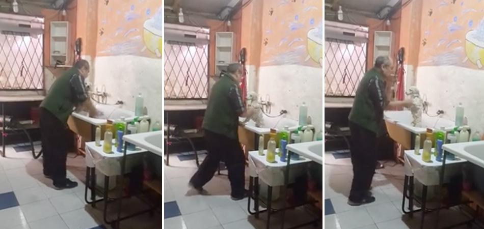 Senhor dono de pet shop é filmado dançando com cãozinho enquanto lhe dava banho