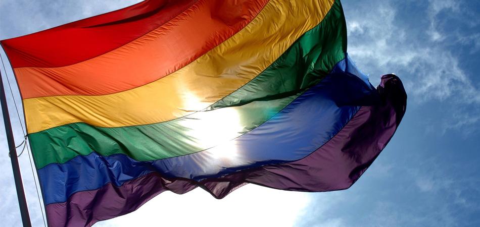 Senado Federal abre consulta pública sobre a criminalização da homofobia no Brasil 1