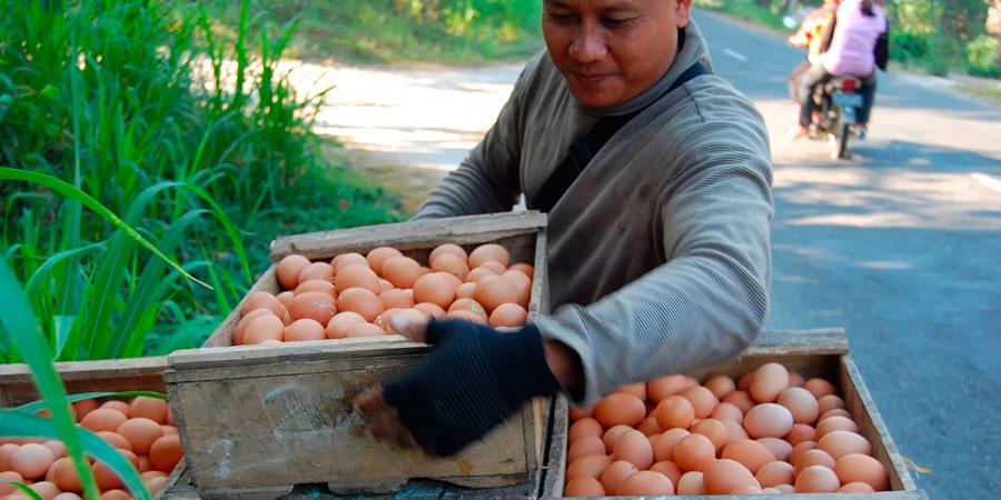 Este povoado no Acre tem a economia baseada em troca –e dá muito certo 1