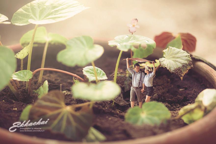 fotografo_de_casamentos_transforma_casais_em_miniaturas_2