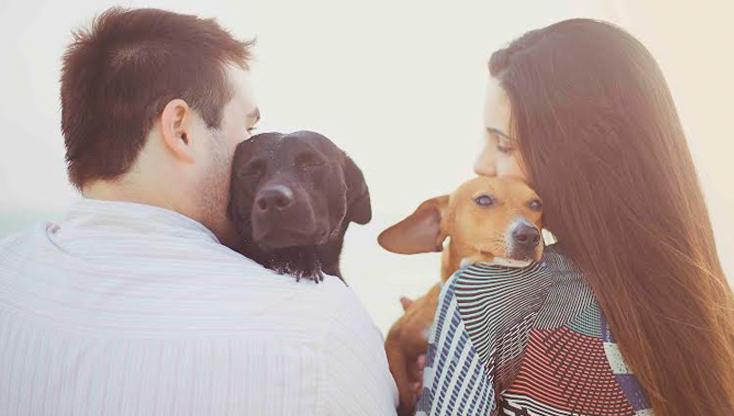 Fotógrafa doa dinheiro de ensaios para ONGs protetoras de animais 1