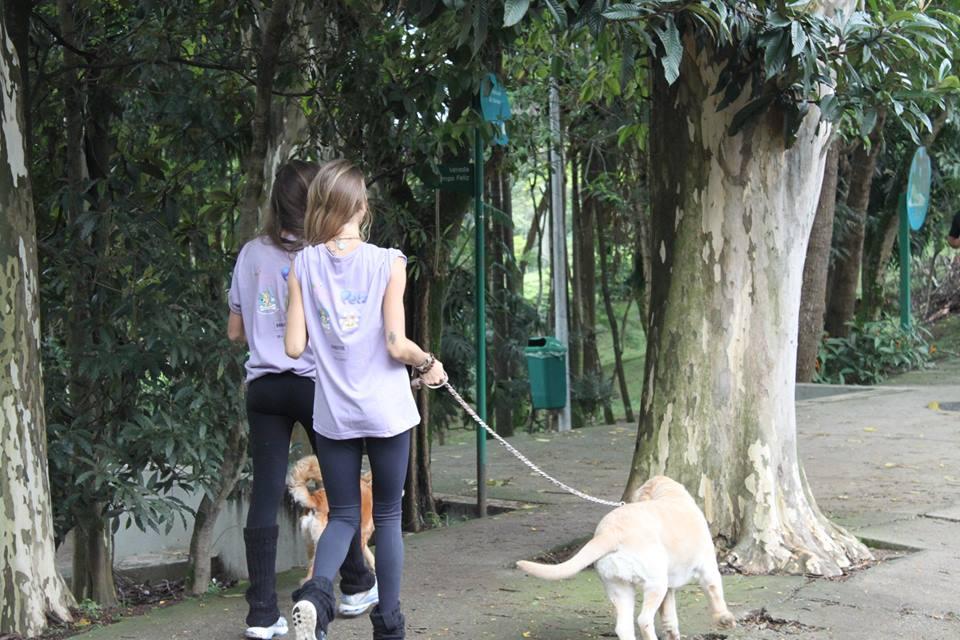 yoga-run-dogs-n-cats10