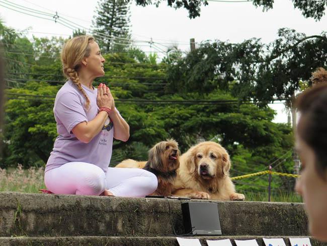 yoga-run-dogs-n-cats5