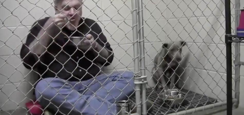 Veterinário se tranca em canil e come com Pitbull para que ela volte a confiar em humanos 2