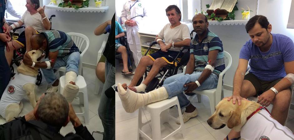 Cão do Corpo de Bombeiros ajudará na recuperação de pacientes de hospital em Santa Catarina 6