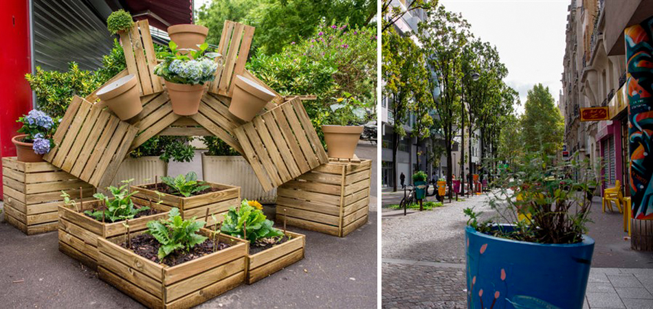 Paris vai possibilitar que moradores plantem árvores frutíferas em espaços públicos 1