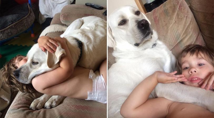 Cão acaba com pesadelos de menino autista que só dormia de 3 a 6 horas por noite 1