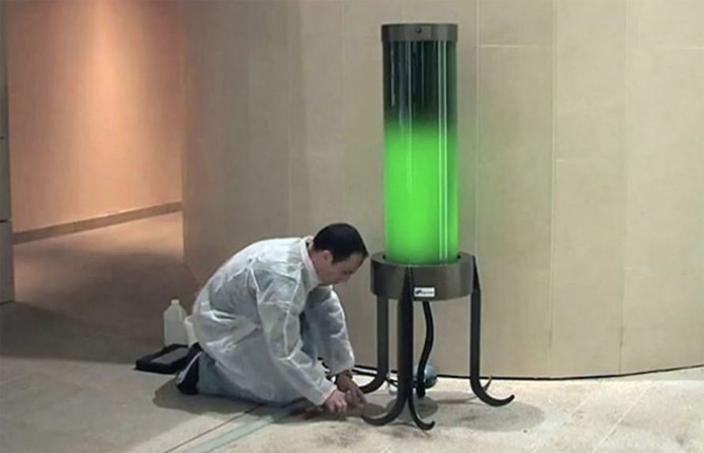 Lâmpada movida a algas dispensa eletricidade e ainda ajuda a despoluir o ar 3