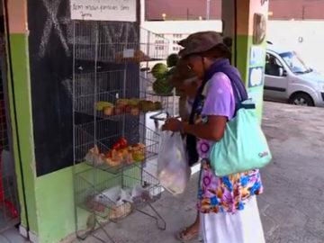 Mercado oferece alimentos de graça para pessoas necessitadas em PE 3