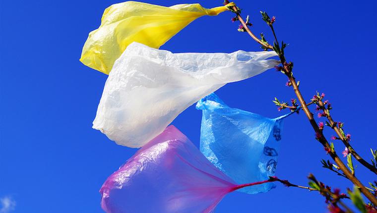 Califórnia proíbe oficialmente o uso de sacolas de plástico 1