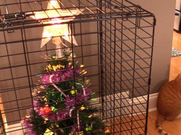 15 ideias para manter sua árvore de natal à provas de bichos de cães e gatos 3