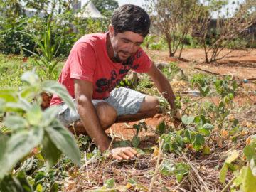Projeto empodera moradores em situação de rua com oficinas de agroecologia 4