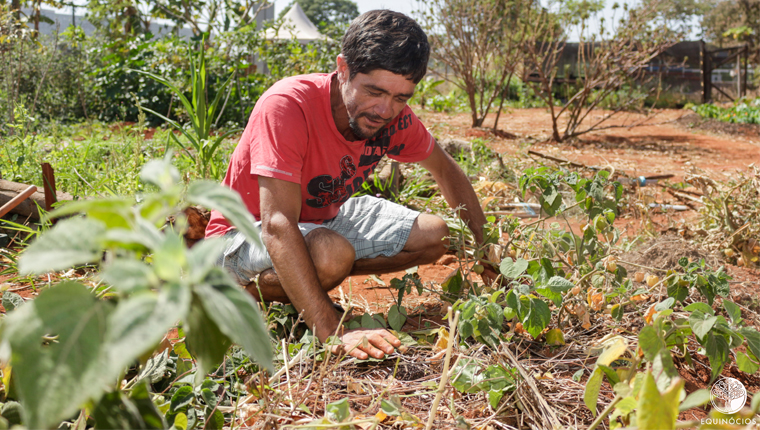 Projeto empodera moradores em situação de rua com oficinas de agroecologia 1