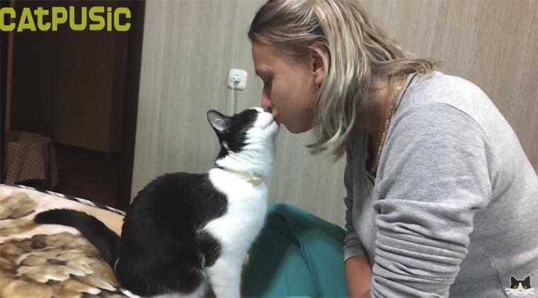 gato_beijo2