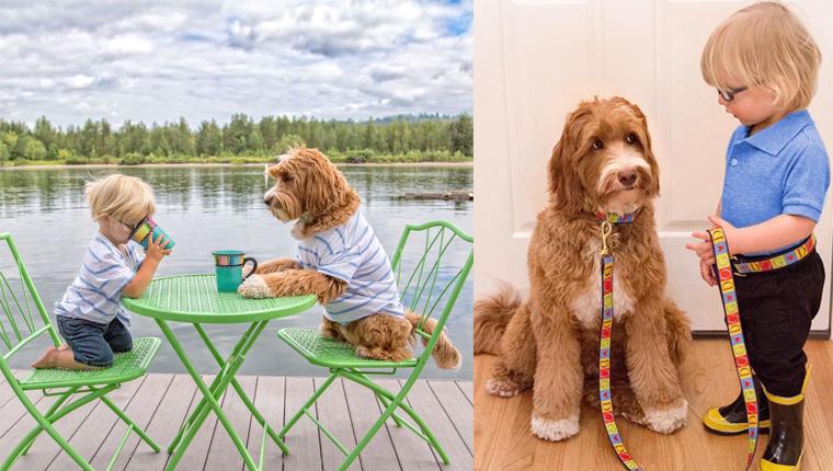 Garotinho de 3 anos e seu cão fazem tudo juntos usando as mesmas roupas 1