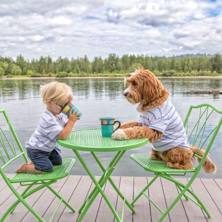 reagandoodle-dog-and-boy-1