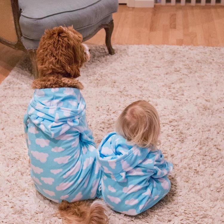 reagandoodle-dog-and-boy-12