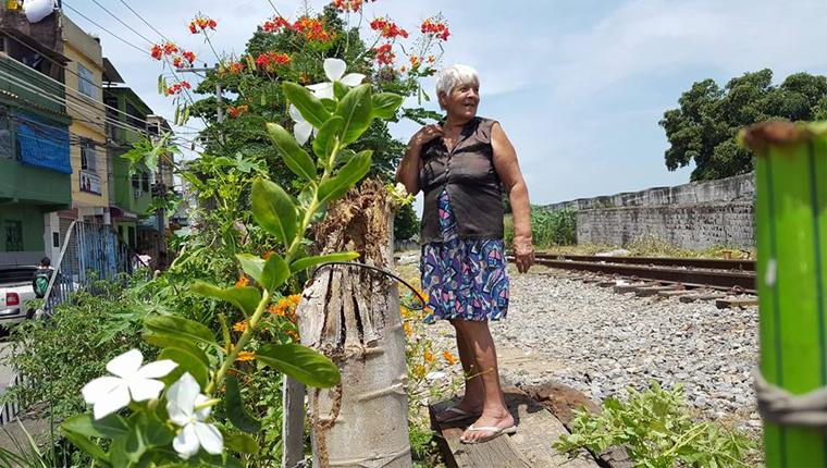 Senhora revitaliza área abandonada e a transforma em jardim de flores e árvores frutíferas no Rio 2