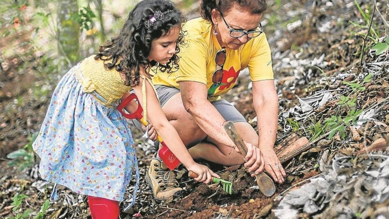 Viúva de vítima de acidente aéreo utiliza indenização para criar um parque de reflorestamento 1