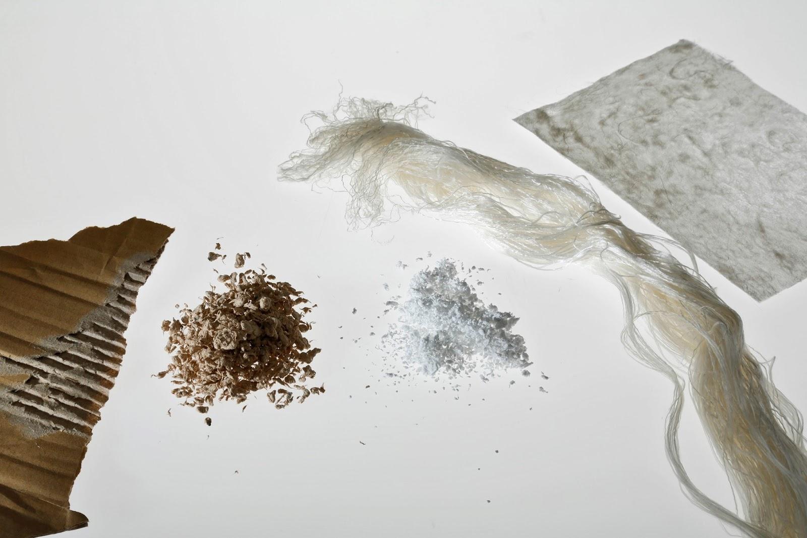 Fralda biodegradável feita de papelão promete reduzir drasticamente a produção de lixo 2