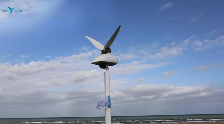Simulando voo do beija-flor para gerar energia limpa